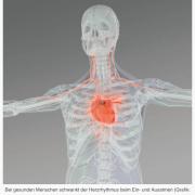 Leichte Unregelmäßigkeiten im Herzschlag weisen auf gesunden Körper hin – Neues Verfahren zur Messung der Lebenserwartung von Infarktpatienten