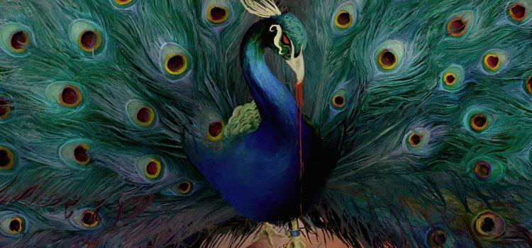 """Endlich ist es soweit! Das neue Album von Opeth """"Sorceress"""" ist raus!"""
