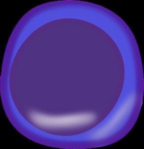 Zelle, Grafik von https://pixabay.com/de/zelle-biologie-anatomie-145907/