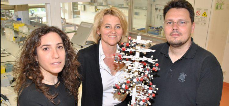Hefe-Köder löst Alarm gegen Krebszellen aus