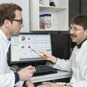 Wahrscheinlichkeitsrechnung für optimalen Impfschutz – T-Zellen folgen stochastischen Regeln