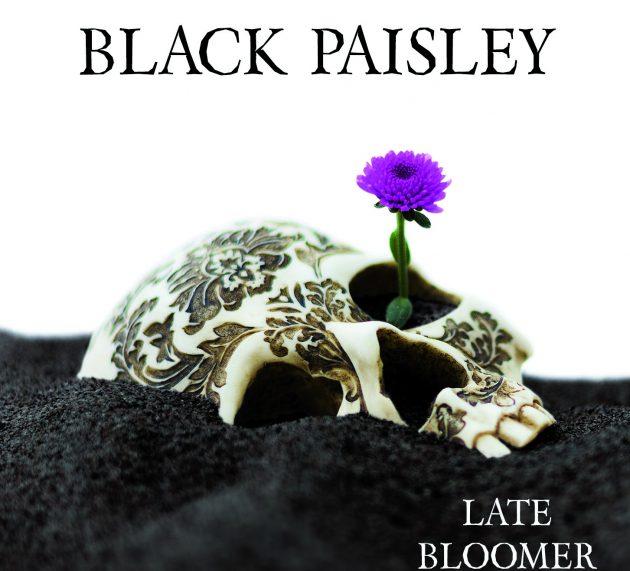 Black Paisley – Late Bloomer
