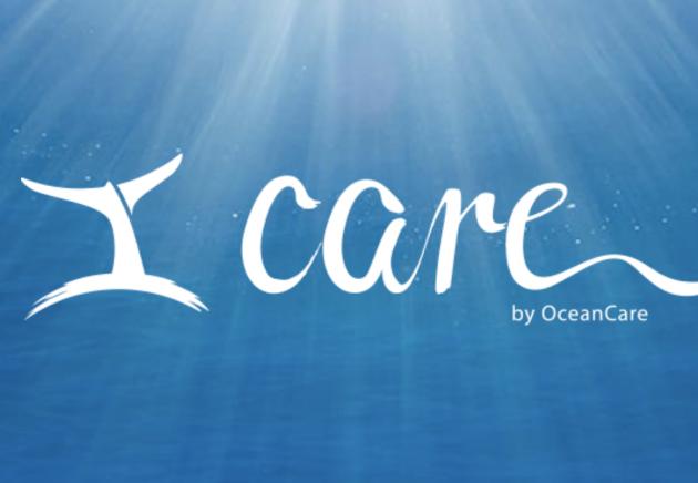 """OceanCare und ITCHY kämpfen mit """"I Care"""" gegen Einwegplastik"""