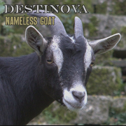 Review: Destinova – Nameless Goat