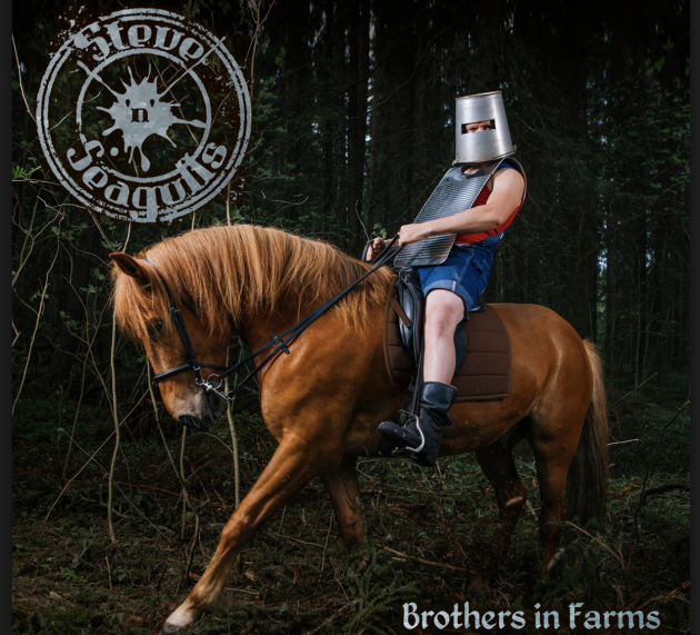 Review: Steve'n'Seagulls – Brothers in Farms