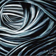 CEILD – A VIEW
