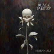 BLACK PAISLEY – Perennials