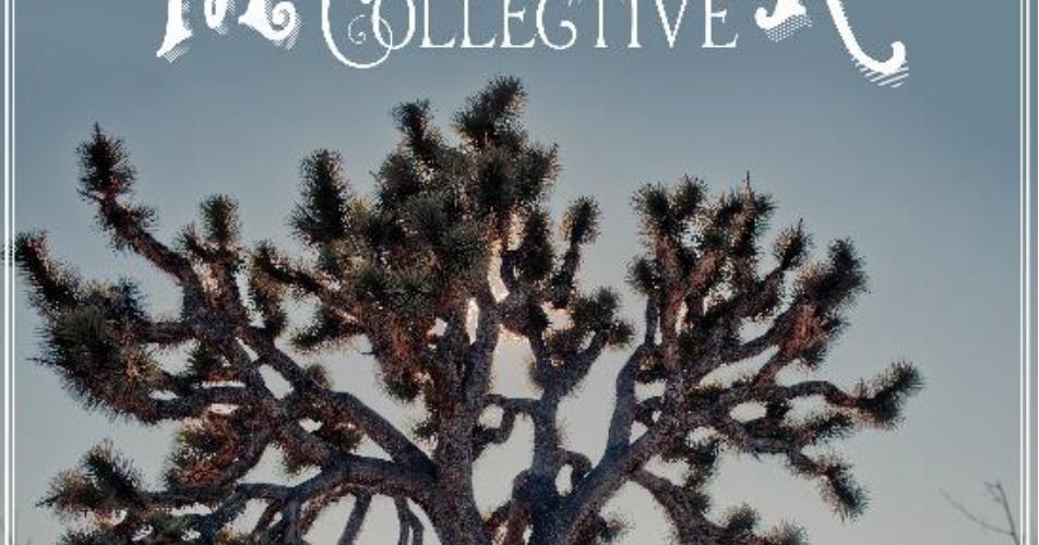 THE PICTUREBOOKS – The Major Minor Collective